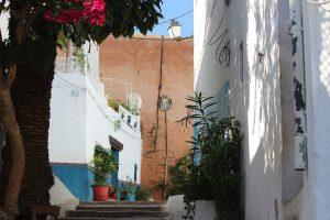 モロッコの映画とかベルベルの言葉とか~アラビア語カフェ企画をちょっと