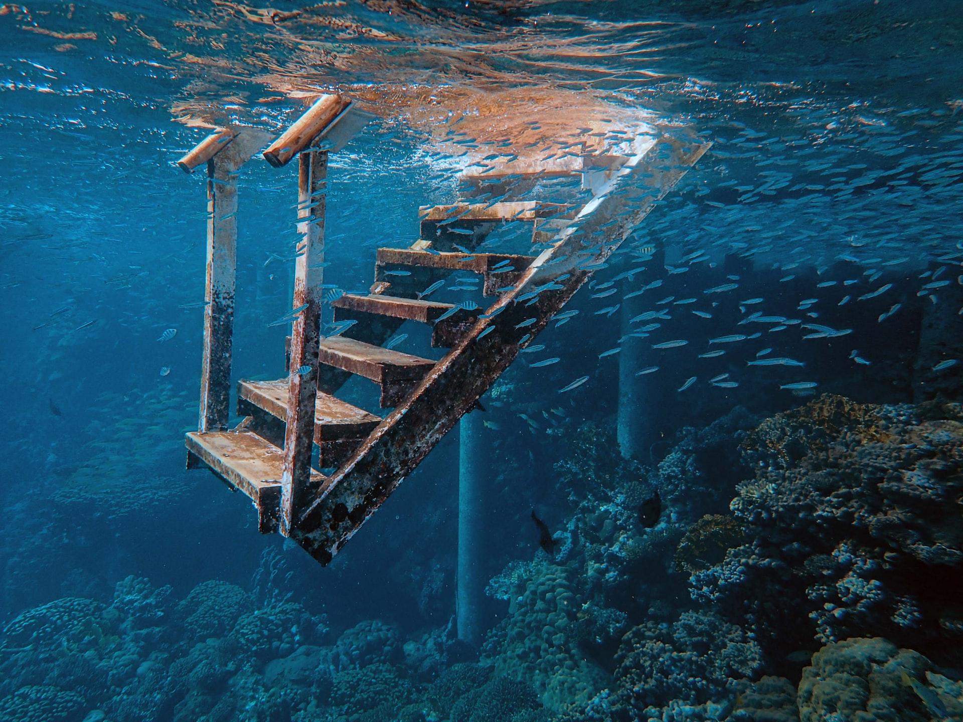YouTubeでスキューバダイビング~エジプトの紅海を泳いでみよう
